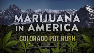 colorado-pot-rush