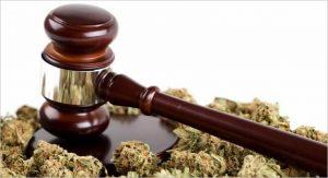 gavel-marijuana2